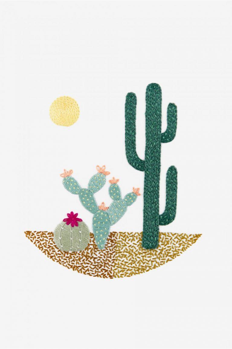 broderie cactus - DMC